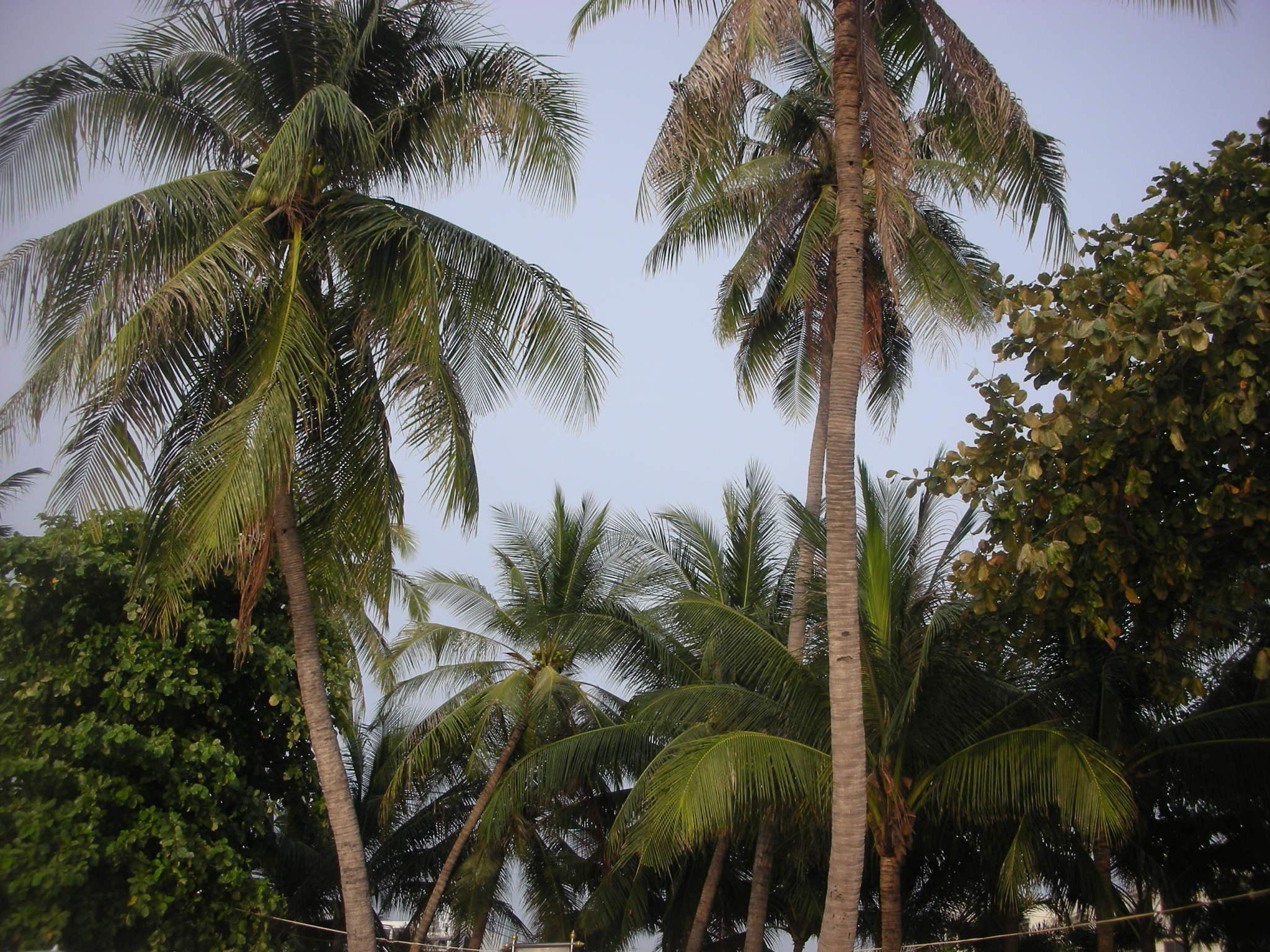 Hotels On Beach Road Www Pattayaone Com